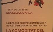 IdeaEscollida